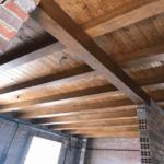 Plagas de termitas CAD Edificios Industriales